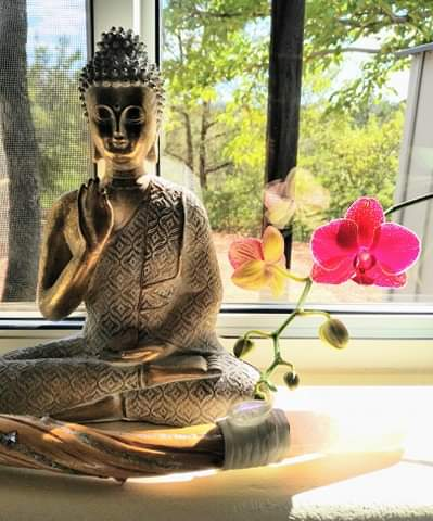 buddha in window with pink orchid